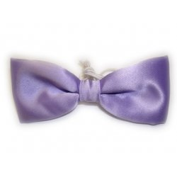 Boy lilac bow tie 6m To 12yrs