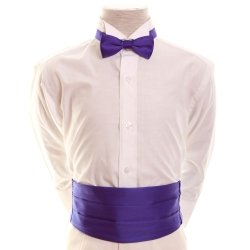 Boys Purple Cummerbund And Bow Tie
