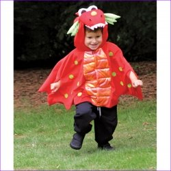 Blaze Red Dragon Dressing Up For Boys 18 To 36 Months