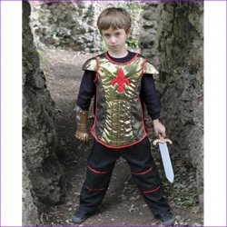 Brave Heart Knight Dressing Up outfit for 3 To 8 Years